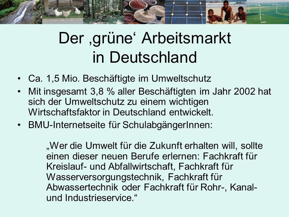 Der 'grüne' Arbeitsmarkt in Deutschland