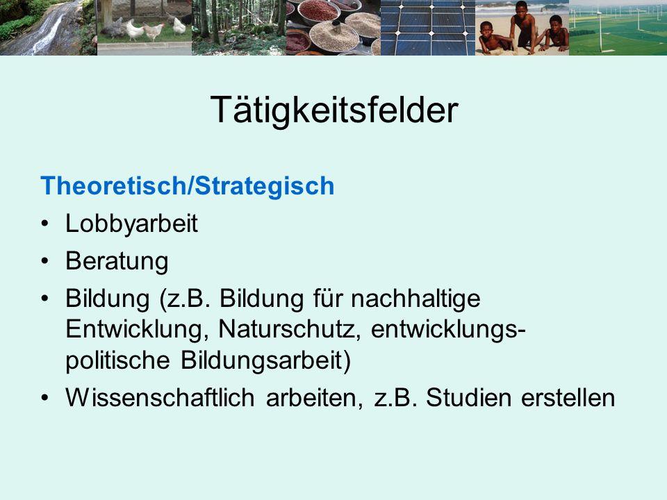 Tätigkeitsfelder Theoretisch/Strategisch Lobbyarbeit Beratung