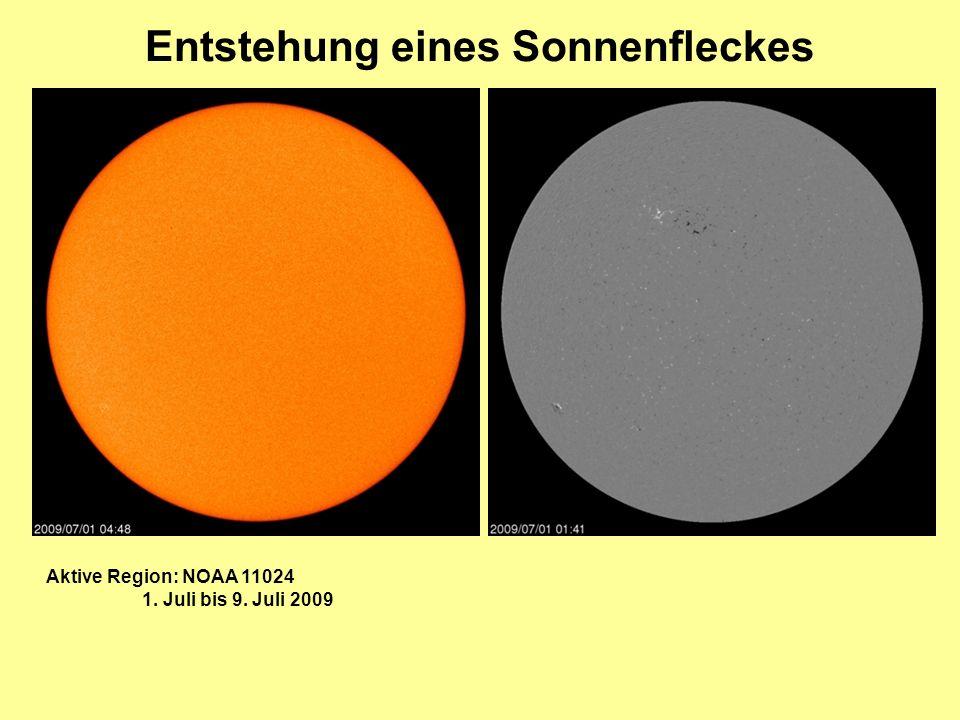 Entstehung eines Sonnenfleckes