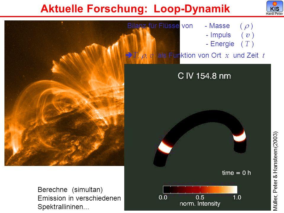 Aktuelle Forschung: Loop-Dynamik