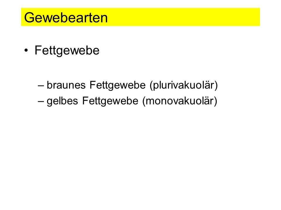 Gewebearten Fettgewebe braunes Fettgewebe (plurivakuolär)