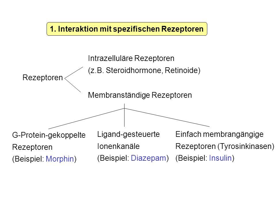 1. Interaktion mit spezifischen Rezeptoren