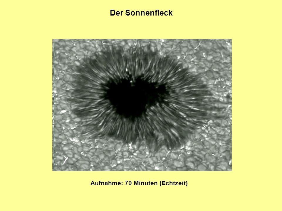 Der Sonnenfleck Aufnahme: 70 Minuten (Echtzeit)