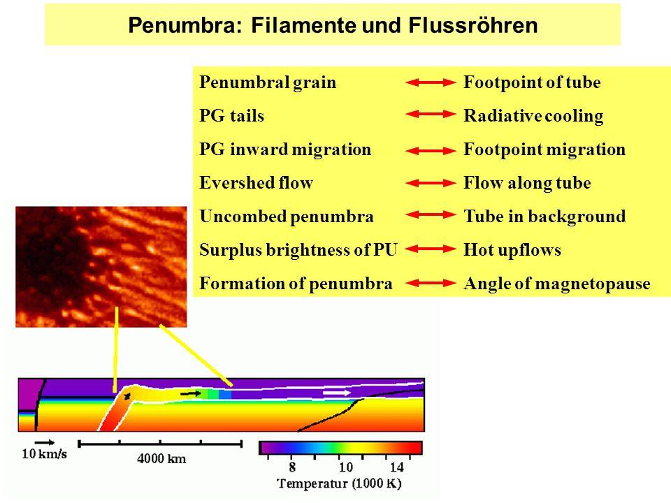 Penumbra: Filamente und Flussröhren