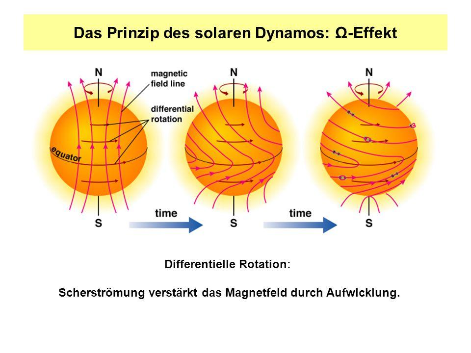 Das Prinzip des solaren Dynamos: Ω-Effekt