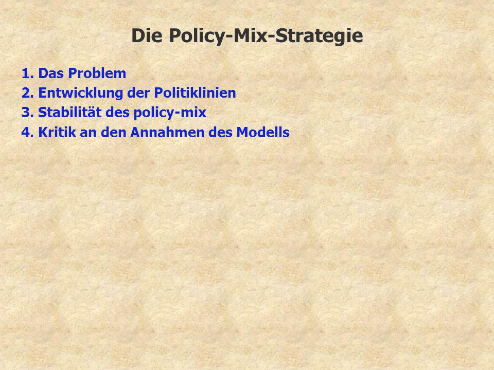 Die Policy-Mix-Strategie