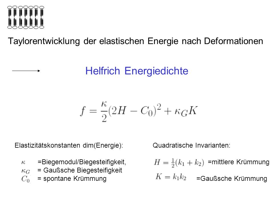 Helfrich Energiedichte