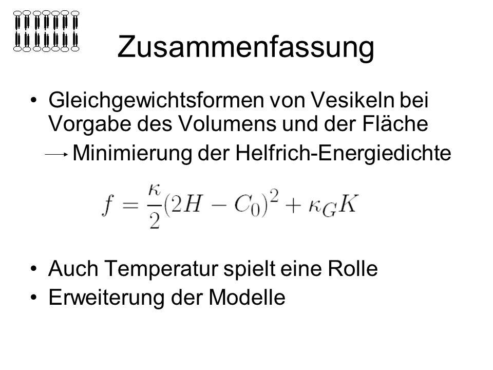 Zusammenfassung Gleichgewichtsformen von Vesikeln bei Vorgabe des Volumens und der Fläche. Minimierung der Helfrich-Energiedichte.