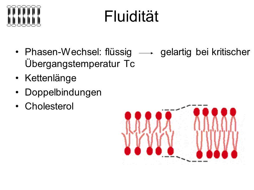 Fluidität Phasen-Wechsel: flüssig gelartig bei kritischer Übergangstemperatur Tc. Kettenlänge.