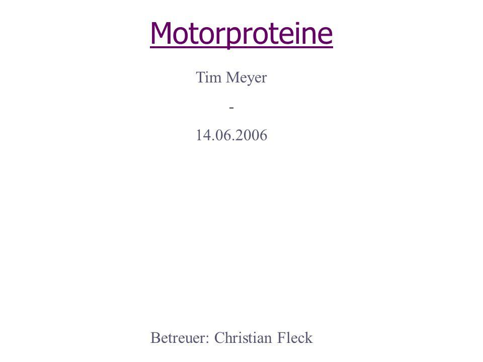 Betreuer: Christian Fleck