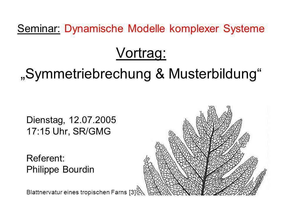 """Seminar: Dynamische Modelle komplexer Systeme Vortrag: """"Symmetriebrechung & Musterbildung"""