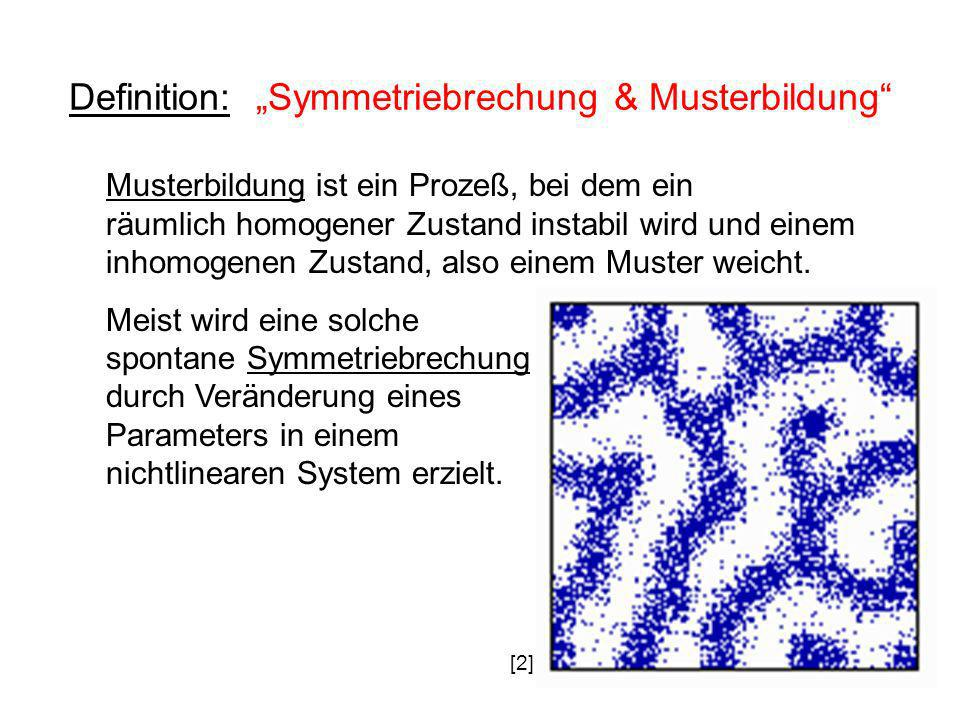 "Definition: ""Symmetriebrechung & Musterbildung"
