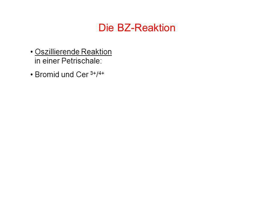 Die BZ-Reaktion Oszillierende Reaktion in einer Petrischale: