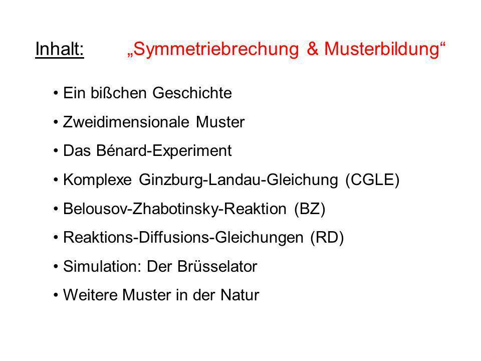 """Inhalt: """"Symmetriebrechung & Musterbildung"""