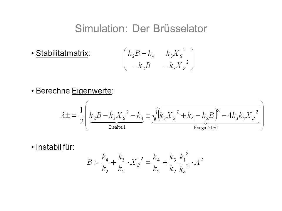 Simulation: Der Brüsselator