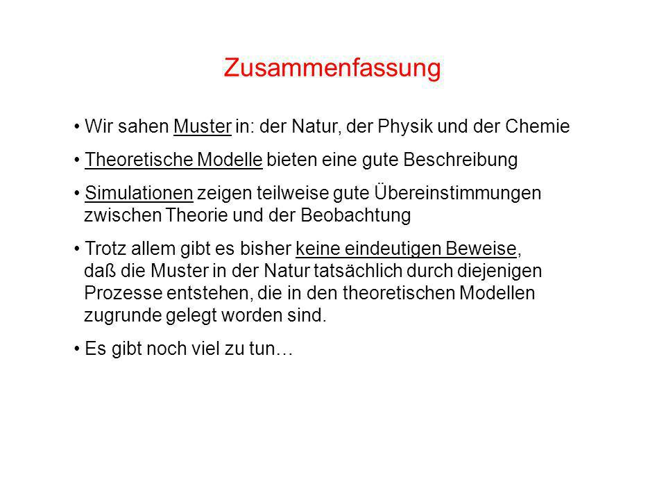 Zusammenfassung Wir sahen Muster in: der Natur, der Physik und der Chemie. Theoretische Modelle bieten eine gute Beschreibung.