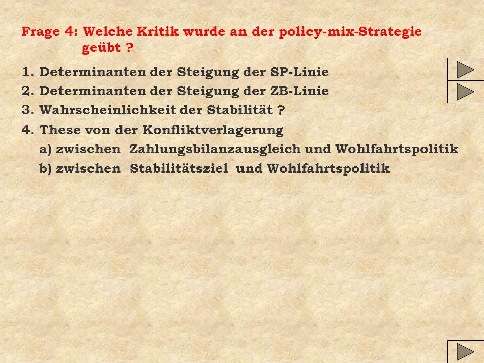 Frage 4: Welche Kritik wurde an der policy-mix-Strategie geübt