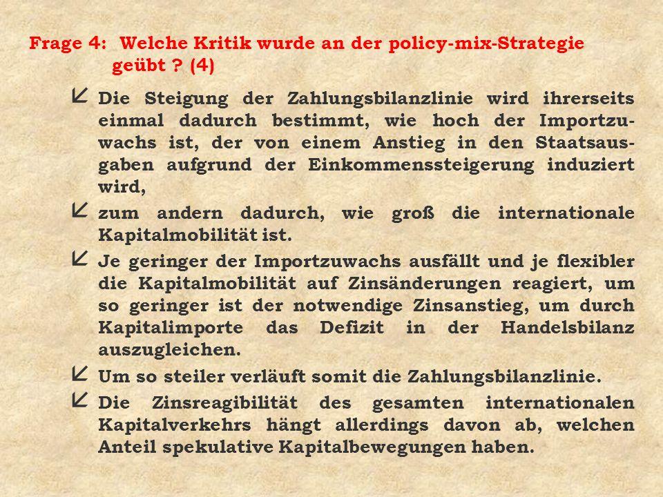 Frage 4: Welche Kritik wurde an der policy-mix-Strategie geübt (4)