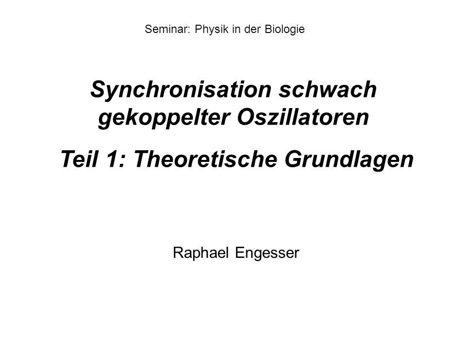 Synchronisation schwach gekoppelter Oszillatoren