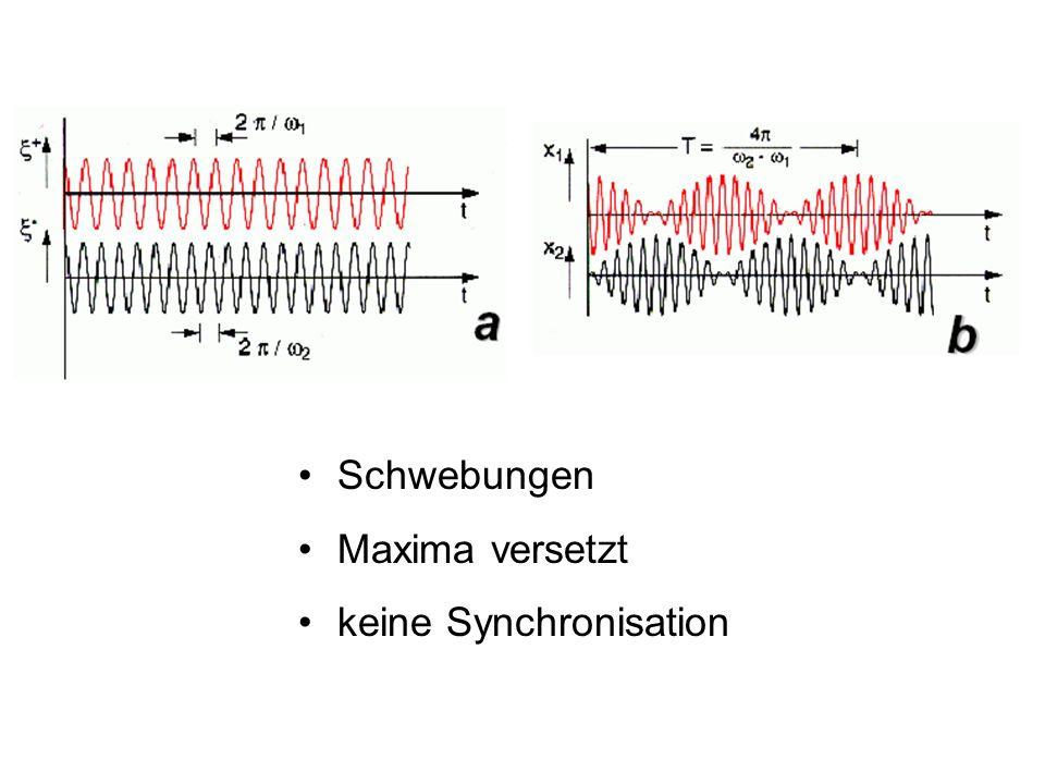 Schwebungen Maxima versetzt keine Synchronisation