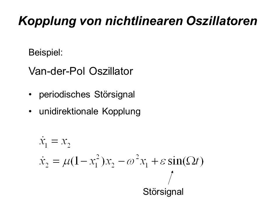 Kopplung von nichtlinearen Oszillatoren