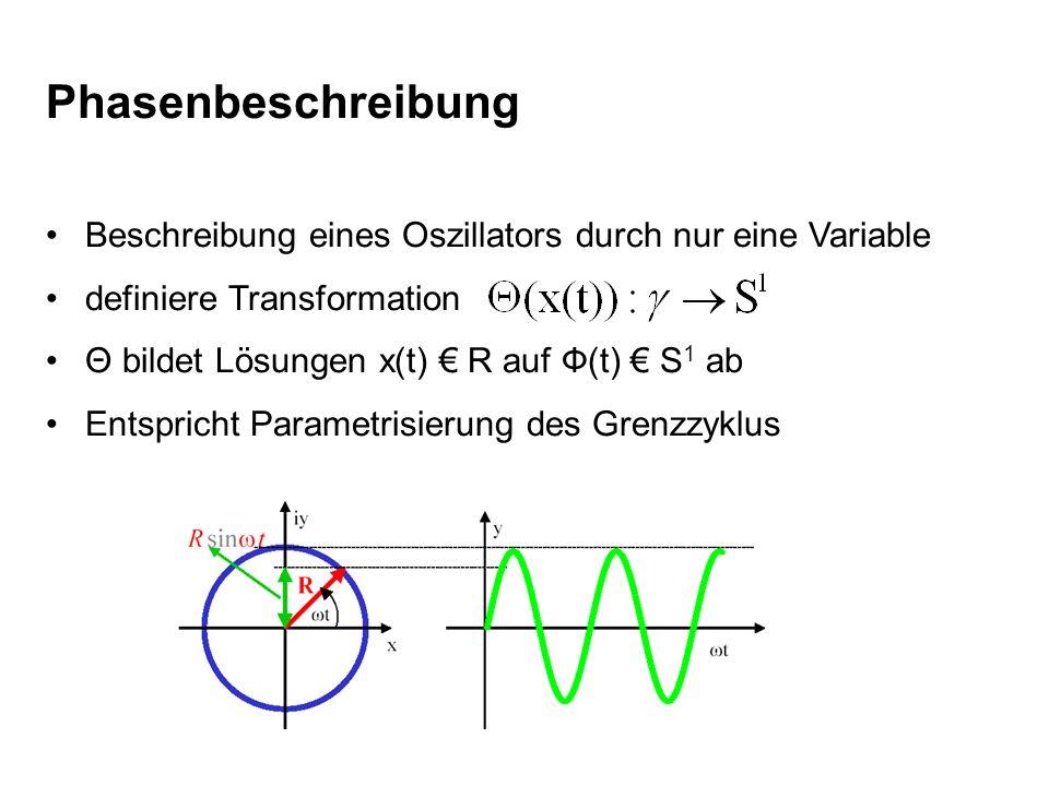 Phasenbeschreibung Beschreibung eines Oszillators durch nur eine Variable. definiere Transformation.