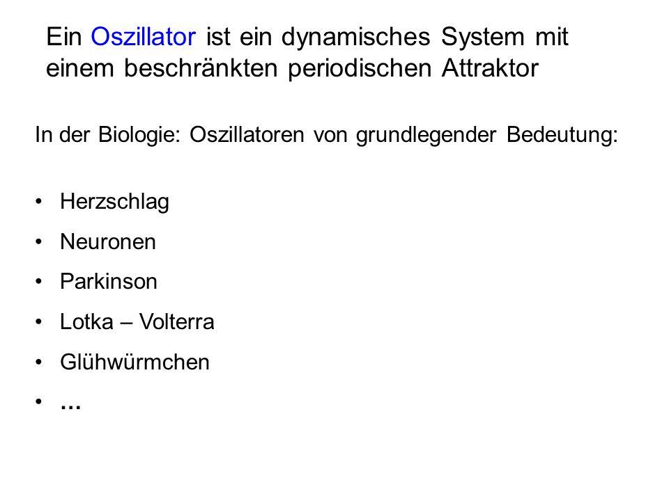 Ein Oszillator ist ein dynamisches System mit einem beschränkten periodischen Attraktor