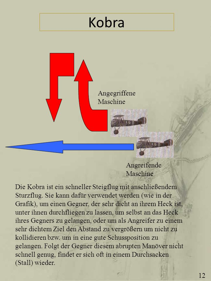 Kobra Angegriffene Maschine Angreifende Maschine
