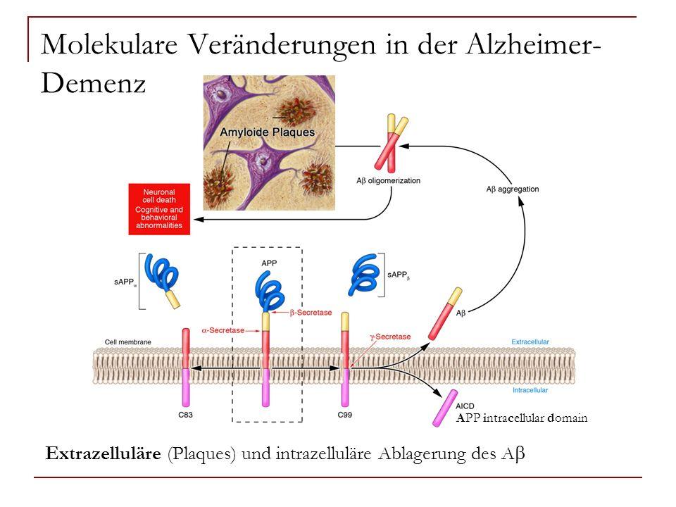 Molekulare Veränderungen in der Alzheimer- Demenz