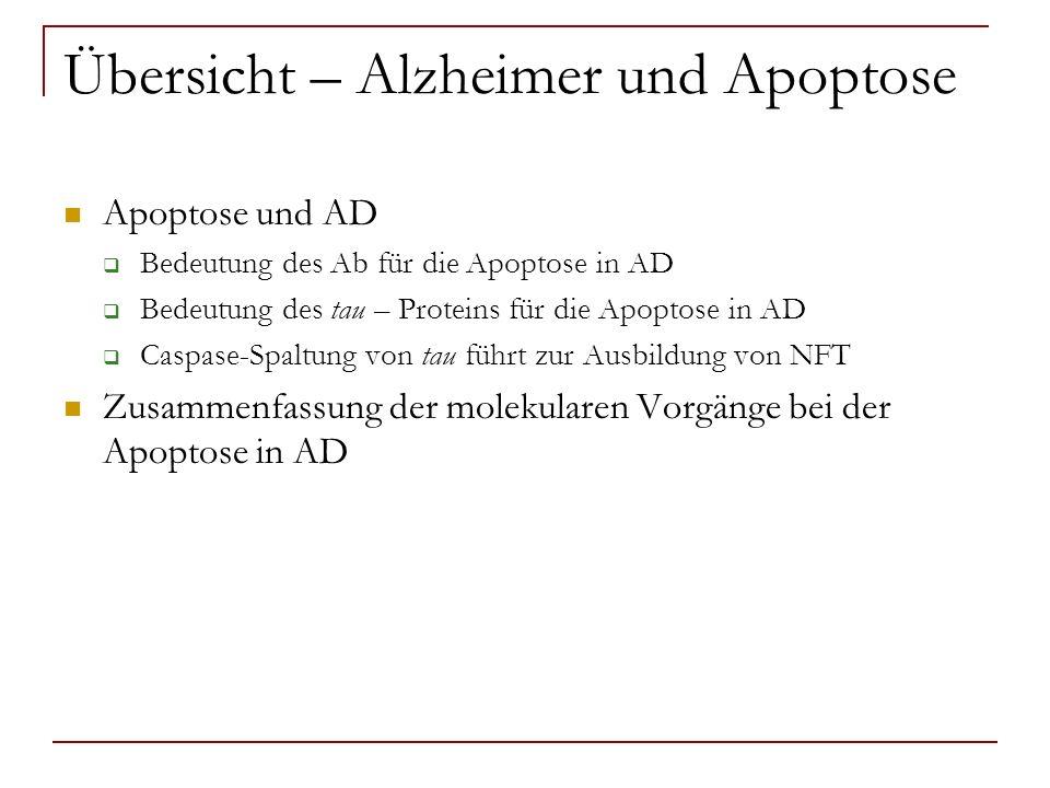 Übersicht – Alzheimer und Apoptose