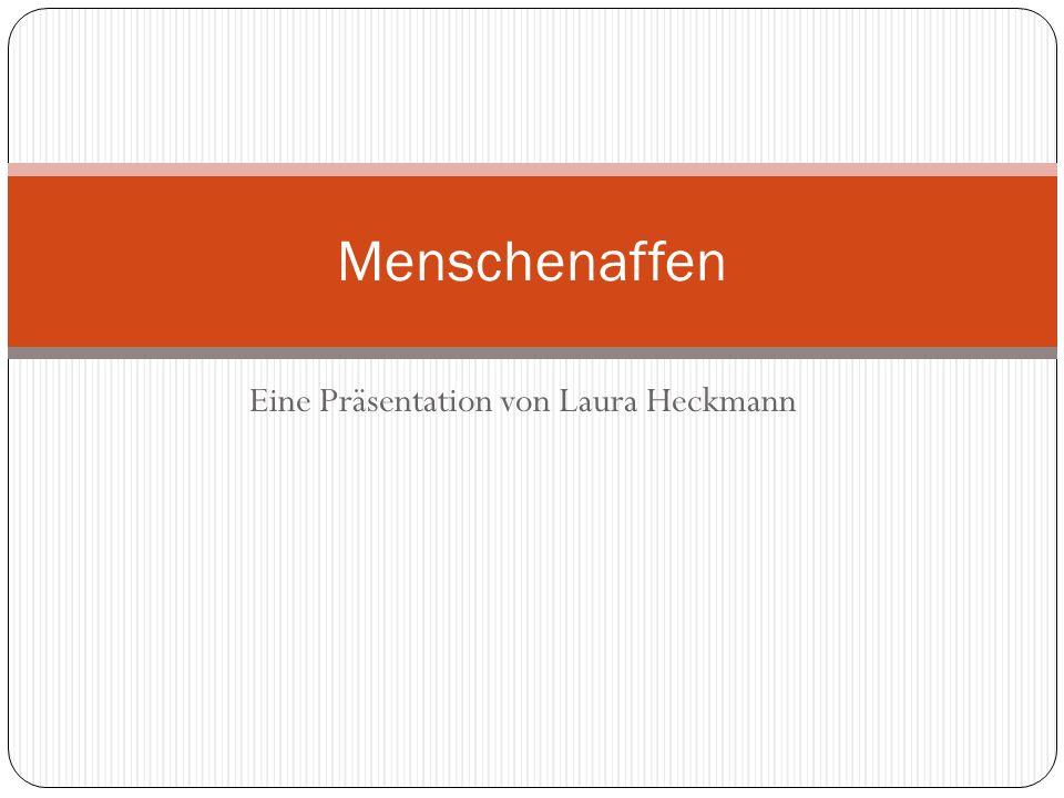 Eine Präsentation von Laura Heckmann