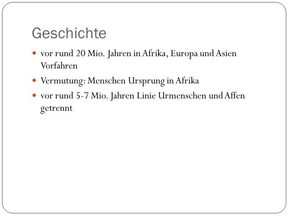 Geschichte vor rund 20 Mio. Jahren in Afrika, Europa und Asien Vorfahren. Vermutung: Menschen Ursprung in Afrika.