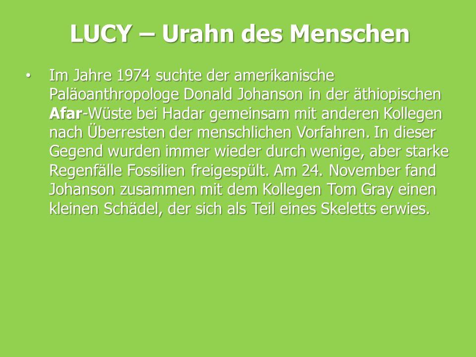 LUCY – Urahn des Menschen