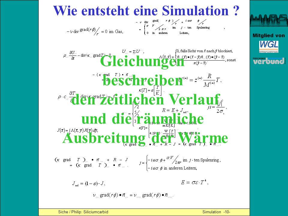 Wie entsteht eine Simulation den zeitlichen Verlauf