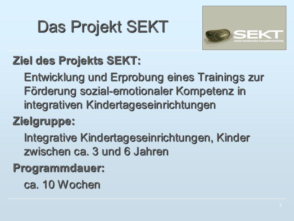 Das Projekt SEKT Ziel des Projekts SEKT: