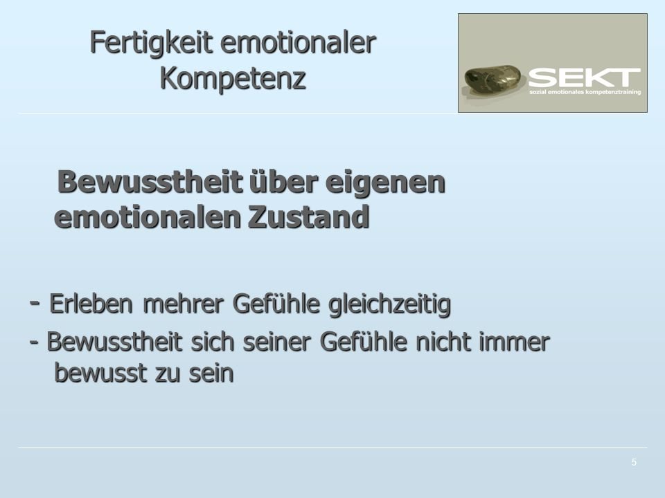 Fertigkeit emotionaler Kompetenz
