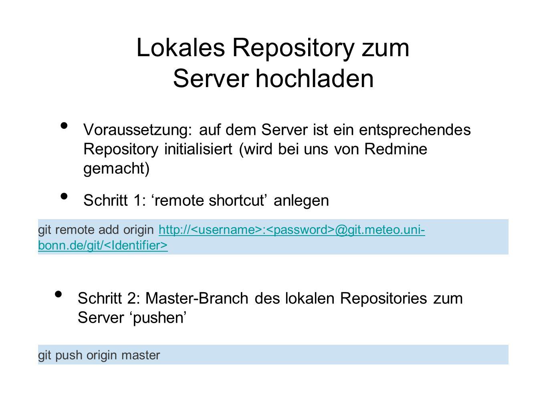Lokales Repository zum Server hochladen