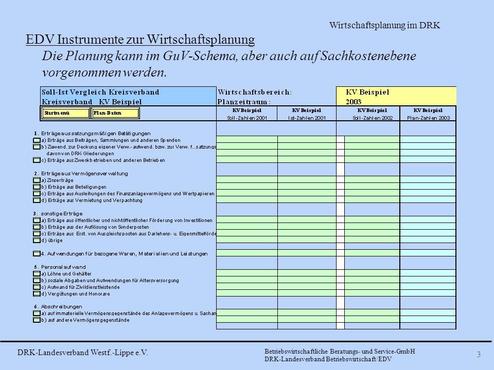 EDV Instrumente zur Wirtschaftsplanung