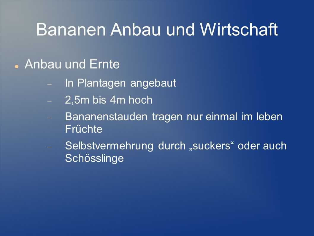 Bananen Anbau und Wirtschaft