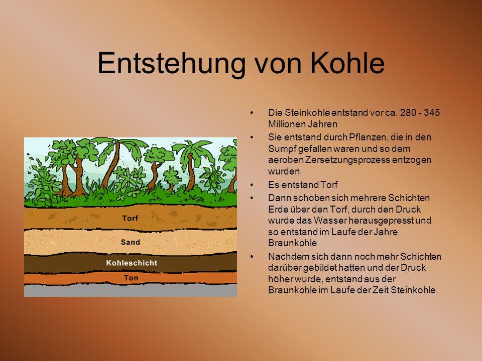 Entstehung von Kohle Die Steinkohle entstand vor ca. 280 - 345 Millionen Jahren.