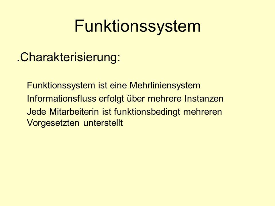 Funktionssystem .Charakterisierung: