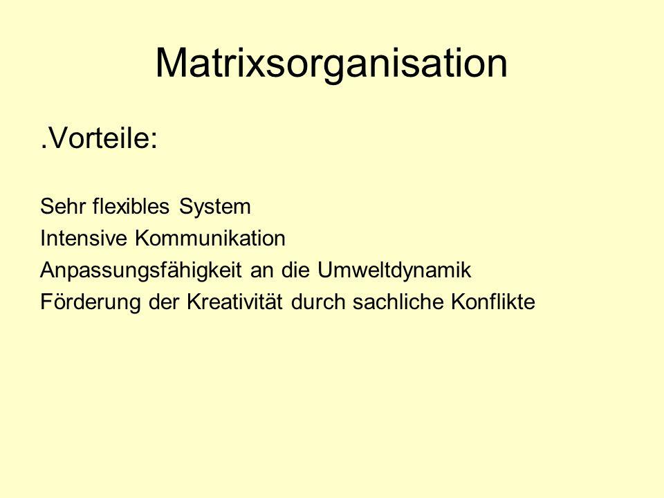 Matrixsorganisation .Vorteile: Sehr flexibles System