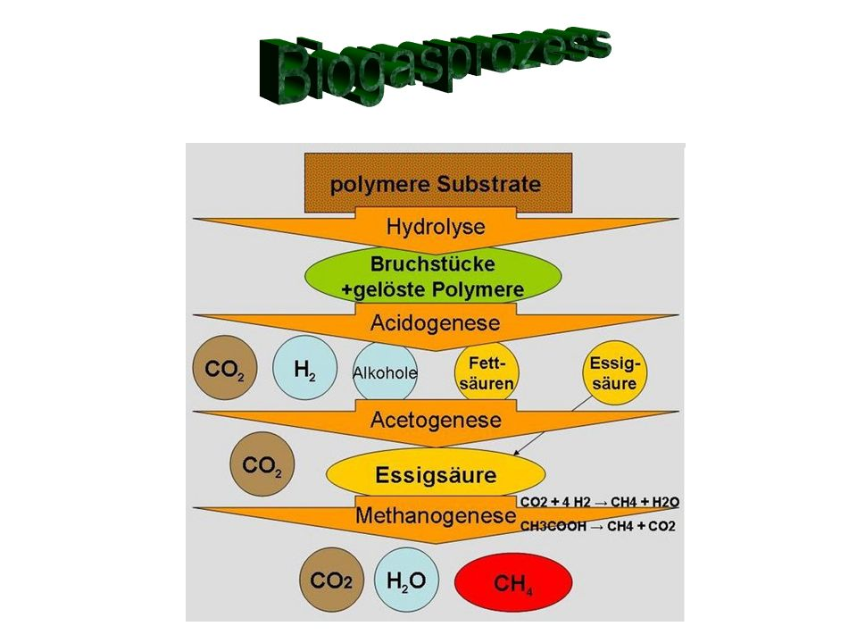Biogasprozess