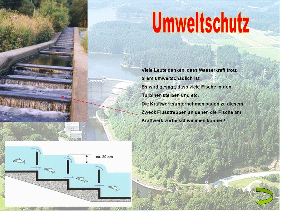 Umweltschutz Viele Leute denken, dass Wasserkraft trotz