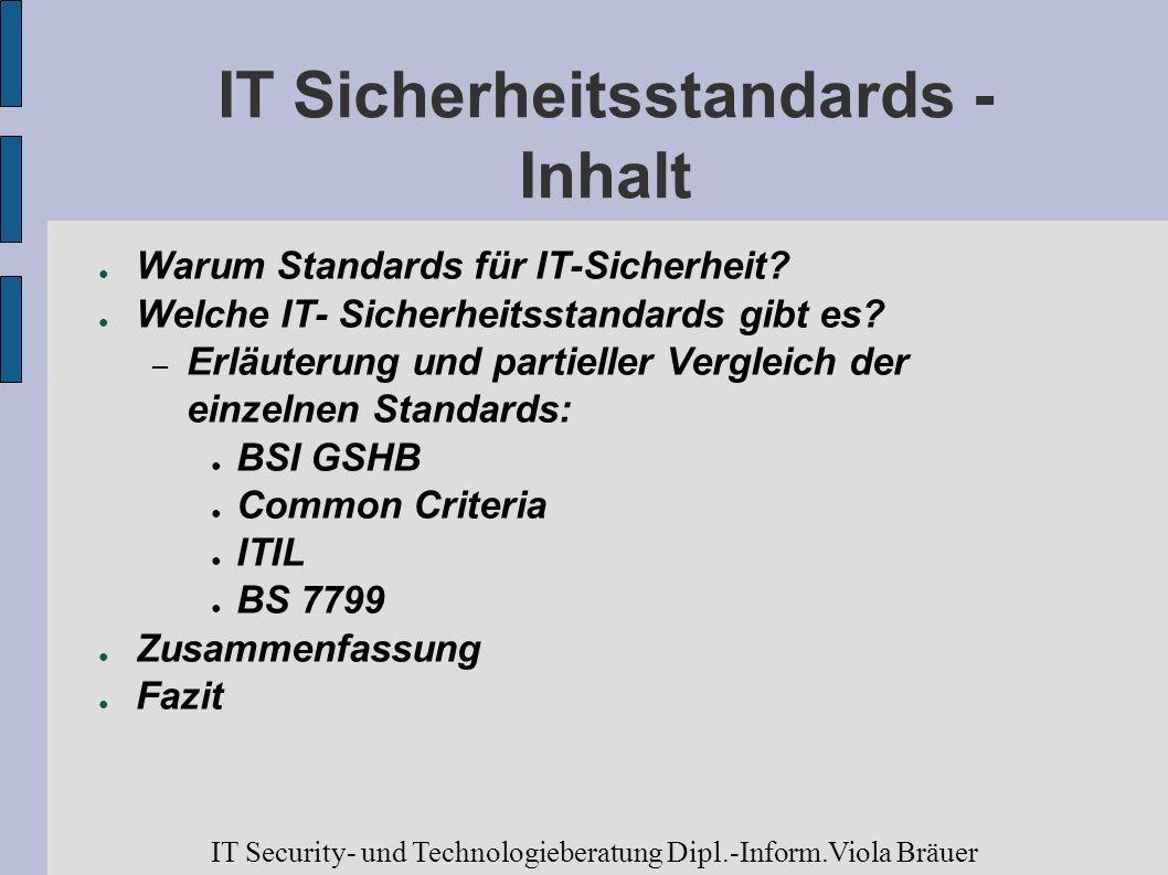 IT Sicherheitsstandards - Inhalt