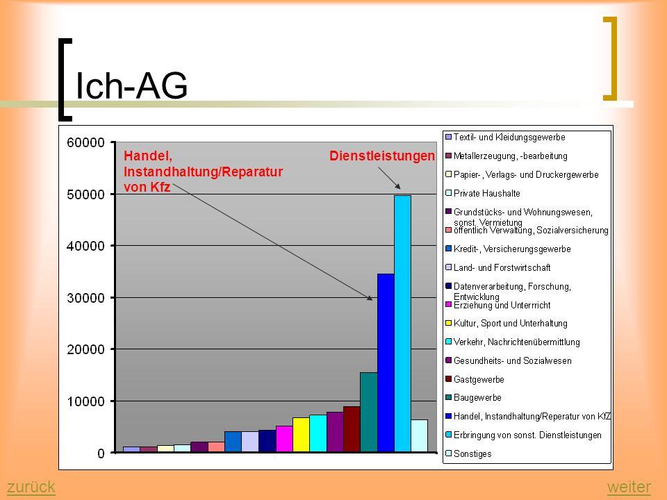 Ich-AG zurück weiter Handel, Instandhaltung/Reparatur von Kfz