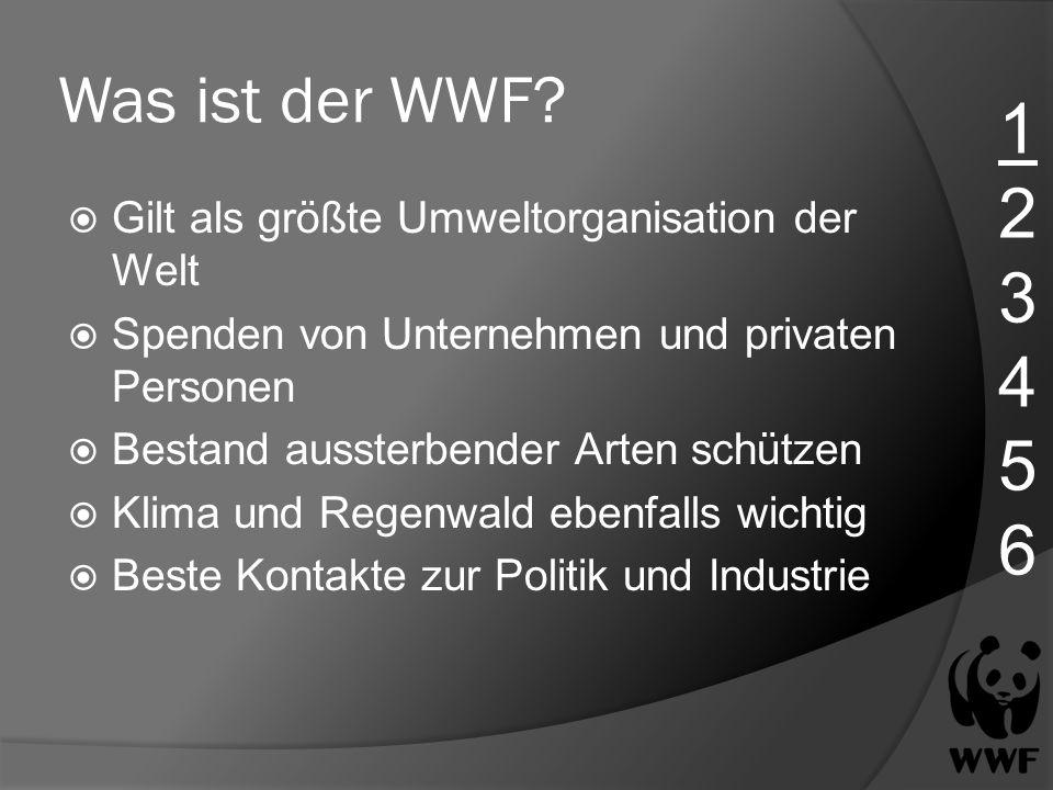 Was ist der WWF 1. 2. 3. 4. 5. 6. Gilt als größte Umweltorganisation der Welt. Spenden von Unternehmen und privaten Personen.