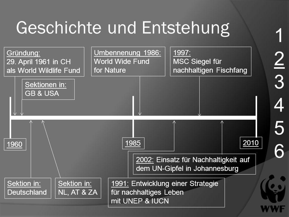 Geschichte und Entstehung