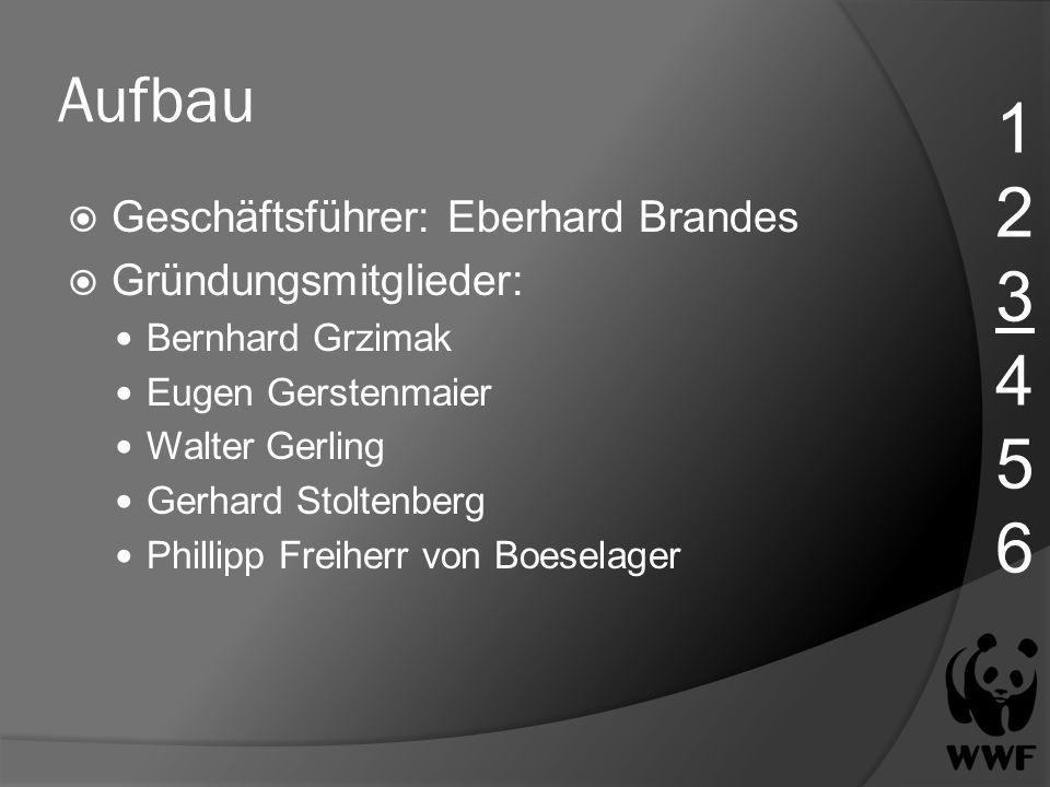 1 2 3 4 5 6 Aufbau Geschäftsführer: Eberhard Brandes