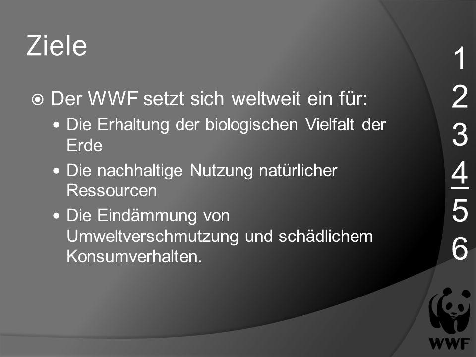 1 2 3 4 5 6 Ziele Der WWF setzt sich weltweit ein für: